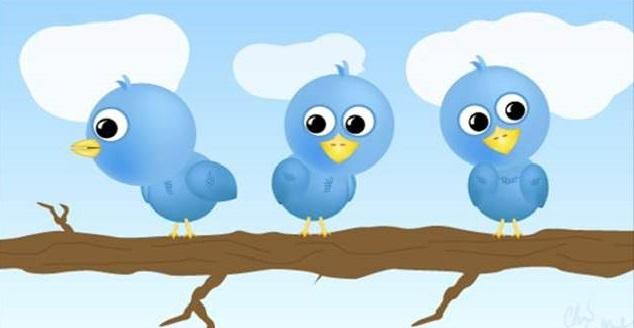 Consideraciones para tener más usuarios en Twitter